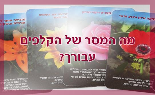 קבלו מידע על שזירת פרחים