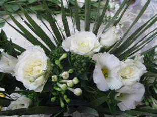 flower21i