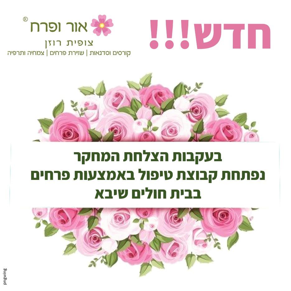 חדש קבוצת טיפול באמצעות פרחים בביה