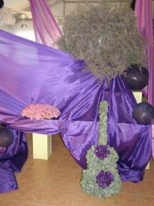 festival 2 20120320 1555208261